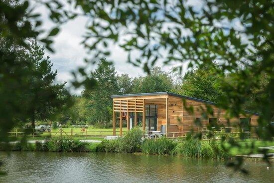 Dolton, UK: Stunning specimen fishing lodge, hot tub, dog friendly , enclosed garden , private swim.