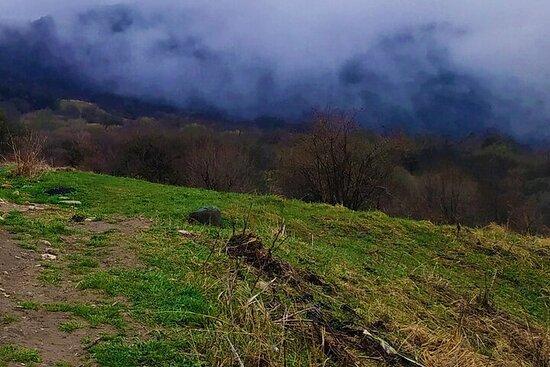 Randonnée au parc national de Lagodekhi au départ de Tbilissi