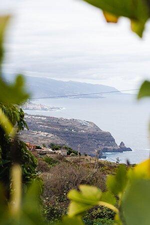 La Vespa Cocina Canaria / Nuestras vistas. Se puede contemplar y disfrutar de un paisaje único del norte de la isla con el Teide de fondo.