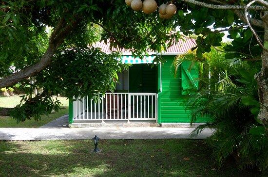 Guadeloupe: Zorkidé Vèt profite de l'ombre d'un grand manguier, tout en gardant un bain de soleil agréable le matin pendant le petit-déjeuner. Le bungalow Zorkidés Vèt profite d'une superbe vue sur la Soufrière qui pourra vous surprendre dès l'ouverture de vos volets.