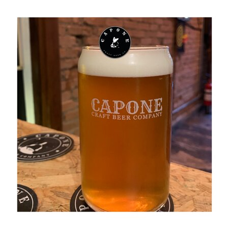 I Can`t Believe it`s a IPA