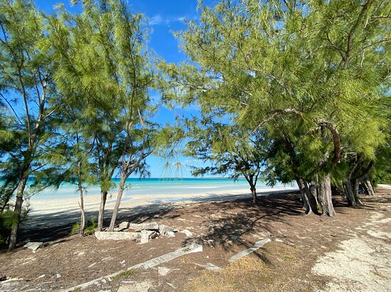 Receiver's Beach Aka Alabaster Bay