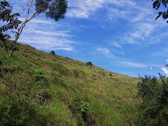 Santiago de Puriscal, Costa Rica: Territorio Indígena Zapatón. Vistas panorámicas de mucho verde, observación de aves y cataratas preciosas.