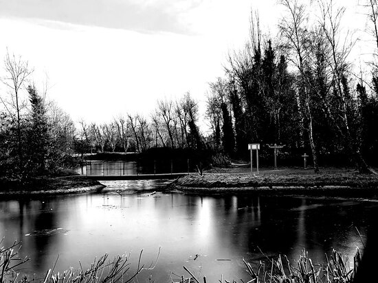 Icy lake in Victoria Park.