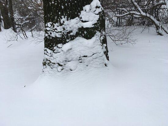 Park Włókniarzy