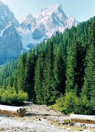La Val Venegia col Cimon della Pala