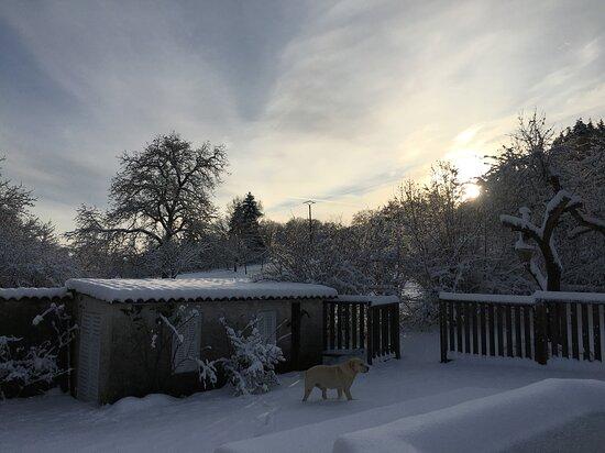 La bottée sous la neige