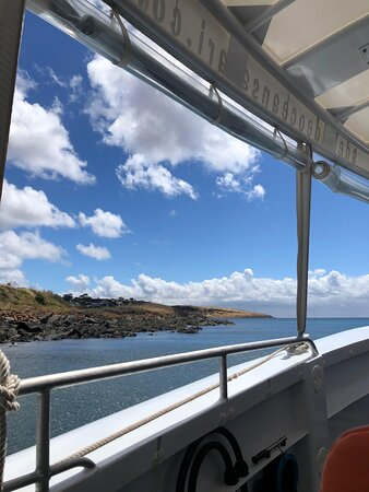Kangaroo Island 75-Minute Ocean Safari: View from our seats on the boat!