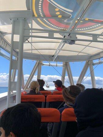 Kangaroo Island 75-Minute Ocean Safari: A look at the immaculate boat!