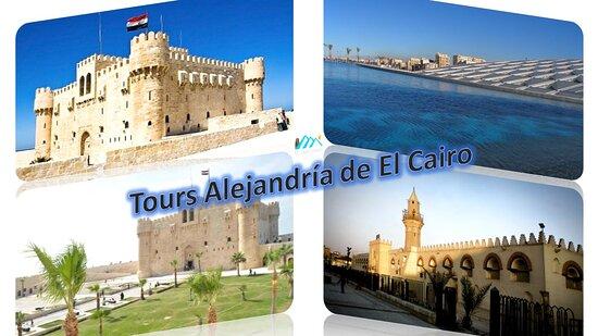 Best Alexandria Day Tour from Cairo: All Tours Egypt te ofrece Tours Alejandría de El Cairo para visitar la ciudad muy hermosa ¨Alejandría¨. En Tours Alejandría de El Cairo vas a disfrutar de visitar muchos lugares turísticos muy famosos en Alejandría. Disfrutas de vivir buenos momentos en Tours Alejandría de El Cairo con All Tours Egypt. Disfrutas de hacer excursiones a Alejandría de El Cairo en coche con aire acondicionado para visitar las Catacumbas de Kom El Shoqafa, la Biblioteca de Alejandría y la Fortaleza de Qaitbay.