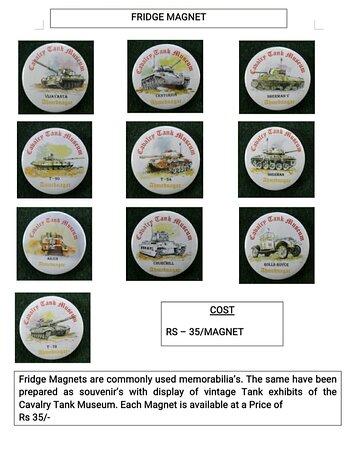 souvenir fridge magnets