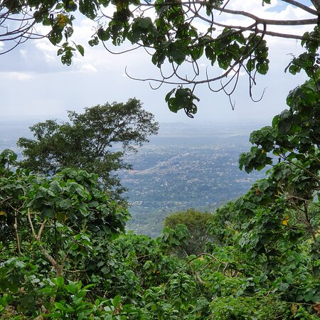The second highest mountain (hill) within Arusha Town just below mt Meru, 3 hours climb / 2 hours descending, also spotted a tree growing onto a tree.