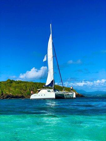 Journée catamaran idyllique avec Delphys