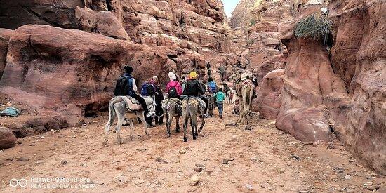 Pétra/Wadi Moussa, Jordanie : טיול הזהב לפטרה