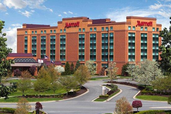 Bedbugs Review Of Chicago Marriott Northwest Hoffman Estates Il Tripadvisor