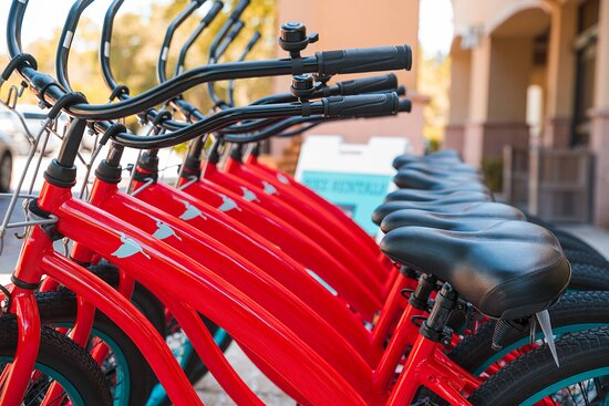 Heron Bike Rentals