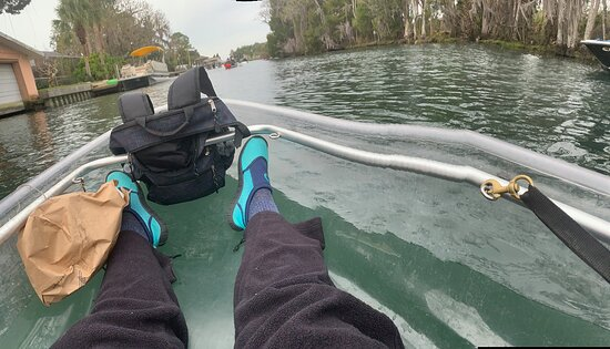 Guided Eco-Tour - Kayak or Paddleboard - Swim with Manatees: See-through kayak.  Sit on the bottom with stadium-style foam seats that provide back support and the bottom of the seat sits directly on the kayak bottom.  Wear water proof pants !! Or wetsuit pants for maximum comfort.