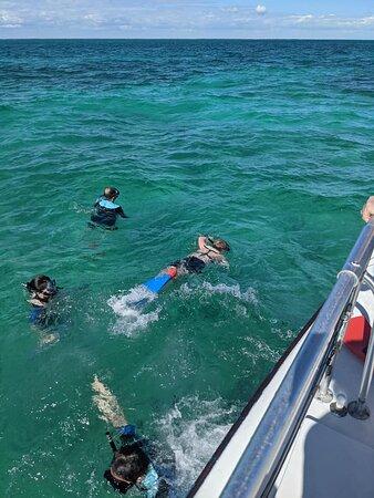 Snorkel Trip: snorkeling