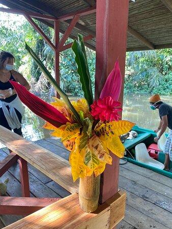 Barra de Pacuare, Costa Rica: Vista del muelle de llegada