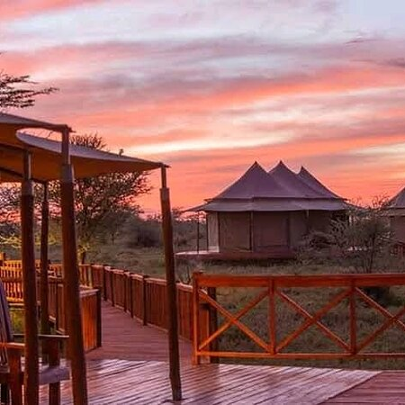 Reserva Natural Masái Mara, Kenia: Holiday is not complete without good accommodation  Book with us   WhatsApp +254706751579  Website: www.skafricansafaris.com  #traveltheworld #photooftheday #love #hollywood #Safari #wildlifephotography
