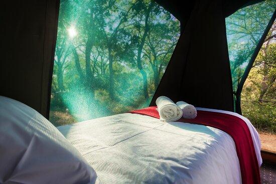 Gravelotte, South Africa: Tent inside