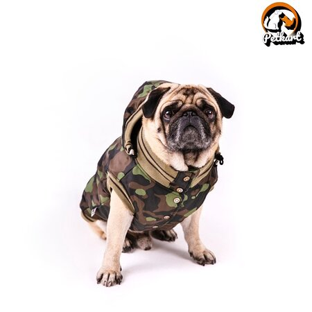 Индия: Petkart.in - No.1 Online Pet Accessories Marketplace in India  https://petkart.in/  PetKart.in offering exclusive fashion products for your loving pets and fulfilling all the daily needs that your pet requires. At Petkart.in, We are offering luxuries pet accessories and pet supplies and delivering all over India.