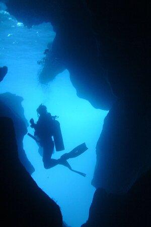 Navarino Sea - Scuba Diving