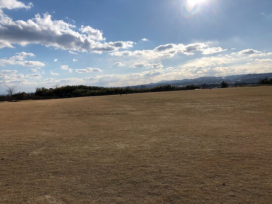 城陽五里五里の丘