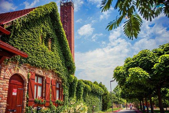 Lipot, Ungarn: A legzöldebb fürdő
