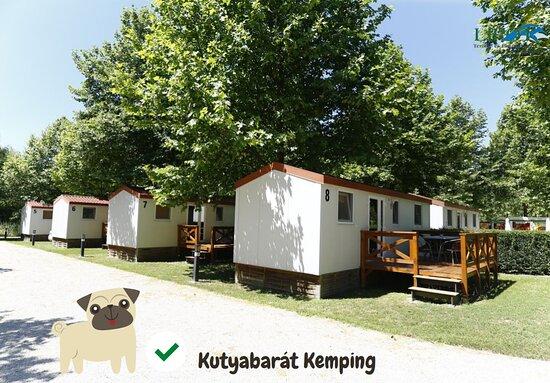 Lipot, Ungarn: Kutyabarát Kemping