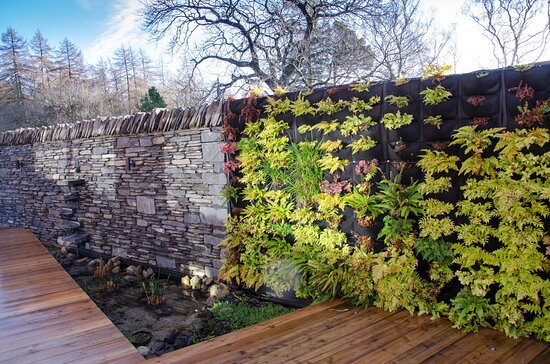 The stone wall/living wall