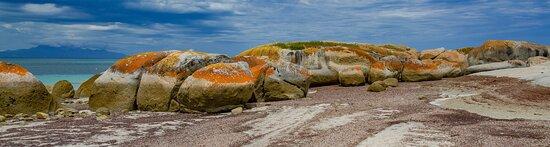 Lillies Bay, Flinders Island