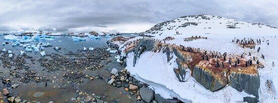 אנטארקטיקה: Antartide 8