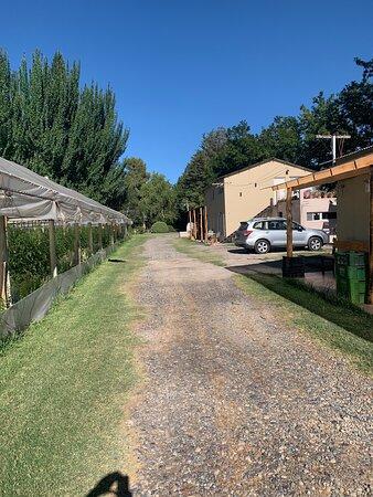 Centenario, الأرجنتين: La huerta orgánica y las cabañas para alojamiento