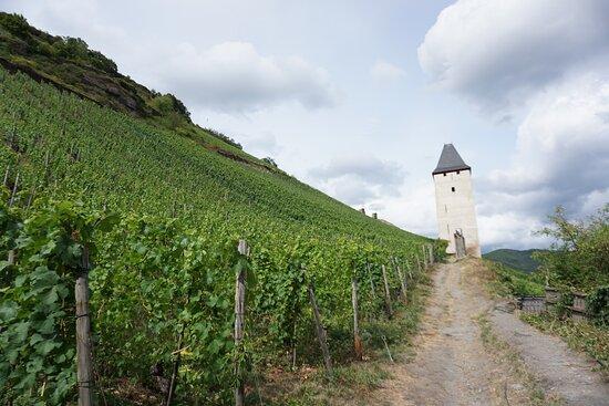 Бакарах, Германия: A small watch tower in the vineyards of Bacharach.