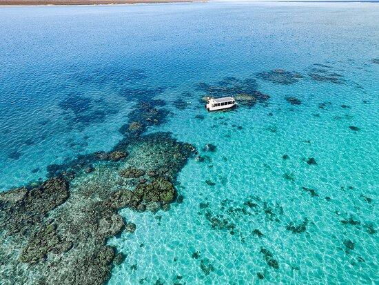 Ningaloo Ecology Cruises Glass Bottom Boat