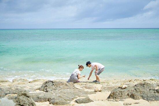 あがいてぃーだの前のビーチ。 長さ100m程の小さなビーチですが、徒歩1分ほどで行けるプライベート感たっぷりの穴場です!