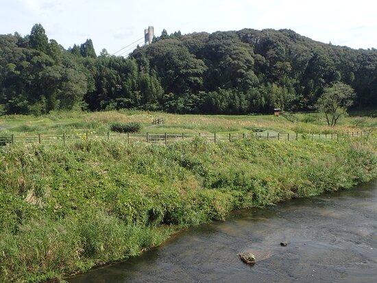Miyahito River Biotope