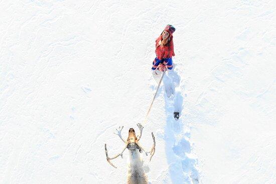 Go to Lapland AB