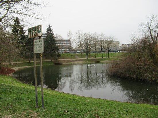 Le lac et son parc