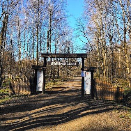 Eco Trail  Malinovaya  Zaseka