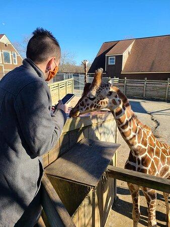 Moseley, Wirginia: feeding the animals