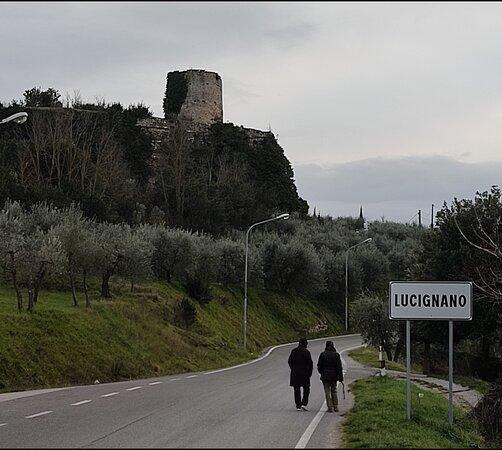 Fortezza Medicea Di Lucignano