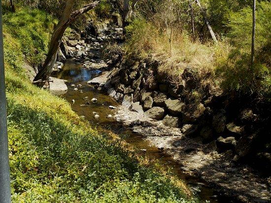 Darebin Creek Trail