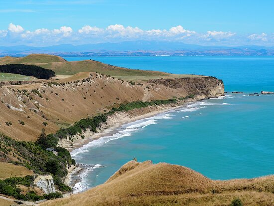 Gannet Safaris Overland tour to Cape Kidnappers Gannet Colony: Looking out towards the public access beach that can also be used to reach the colony by foot.