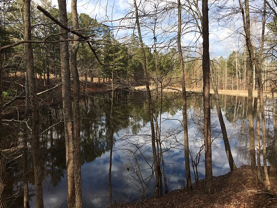 Flowery Branch, GA: There is a large pavilion with picnic tables, grills & a fireplace, a smaller pavilion with picnic table & grill, Dog parks for both small & large dogs, a Kids playground, a lake, natural terrain trails, and large open green spaces