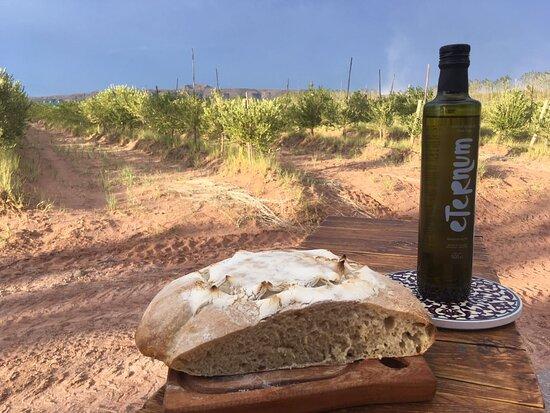 Rincon de los Sauces, Argentinien: eternum