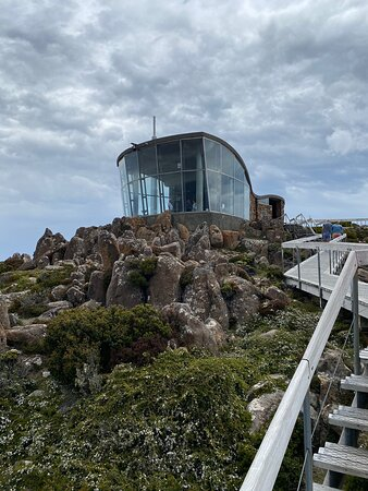 kunanyi / Mt Wellington Explorer Bus - 2 Hour Return Tour Photo