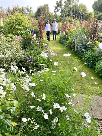 Ardan Garden, Howth,  is created and cared for by Nuala and Conall from scratch