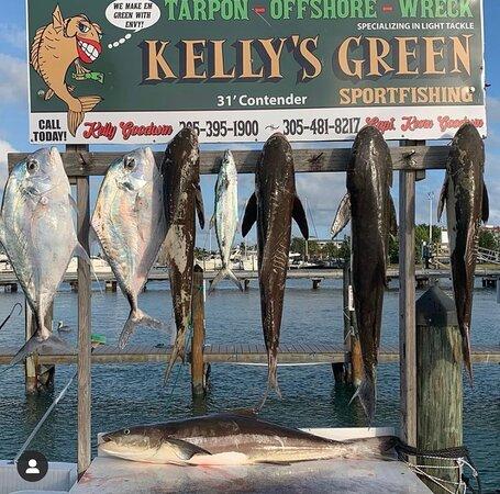 Kelly's Green Sportfishing